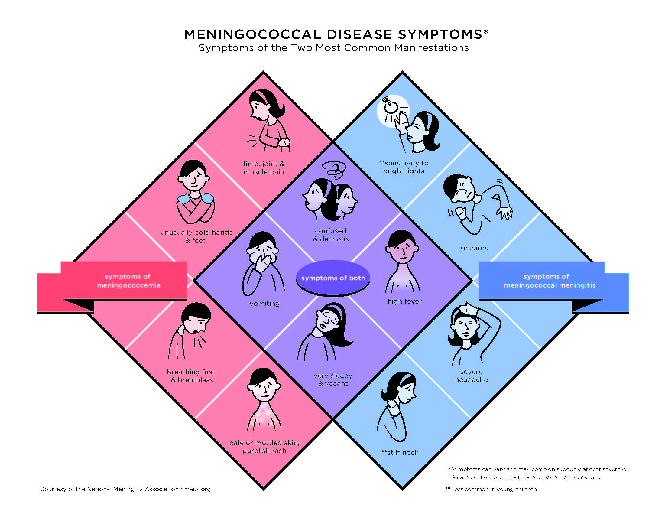 How to Prevent Meningitis How to Prevent Meningitis new picture
